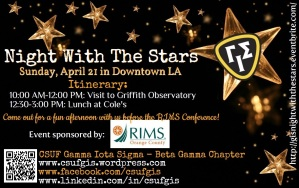 Night With The Stars Flyer
